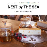 【知多市】NESTbyTHESEA(ネストバイザシー)海の見えるカフェ!オープンデッキとフォトジェニックスポットでチーズケーキと紅茶をいただく。