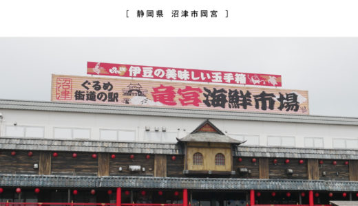 沼津ぐるめ街道の駅「竜宮海鮮市場」は楽しいがいっぱい!かき揚げ定食でワンコインランチ!