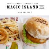 【羽島市】MAGIC ISLAND(マジックアイランド)アメリカンRock'n Rollランチもやってるライブバー!