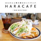 【稲沢市】HARACAFE(はらかふぇ)兄弟で営む地域密着型カフェ!萌え断のホットサンドランチが映える♪キッズスペース